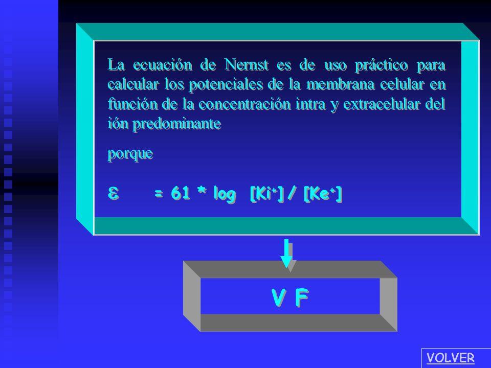 e = 61 * log [Ki+] / [Ke+]